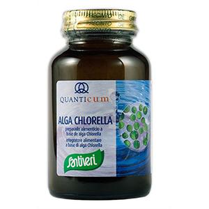 Alga Chlorella de Quanticum