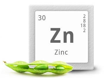 Complemento de Zinc Santiveri