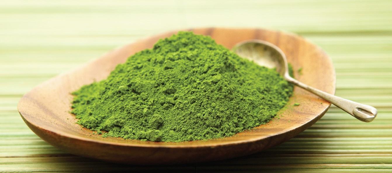 Extracto Te Verde Santiveri