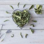 ¿Por qué todo el mundo está loco por la stevia?